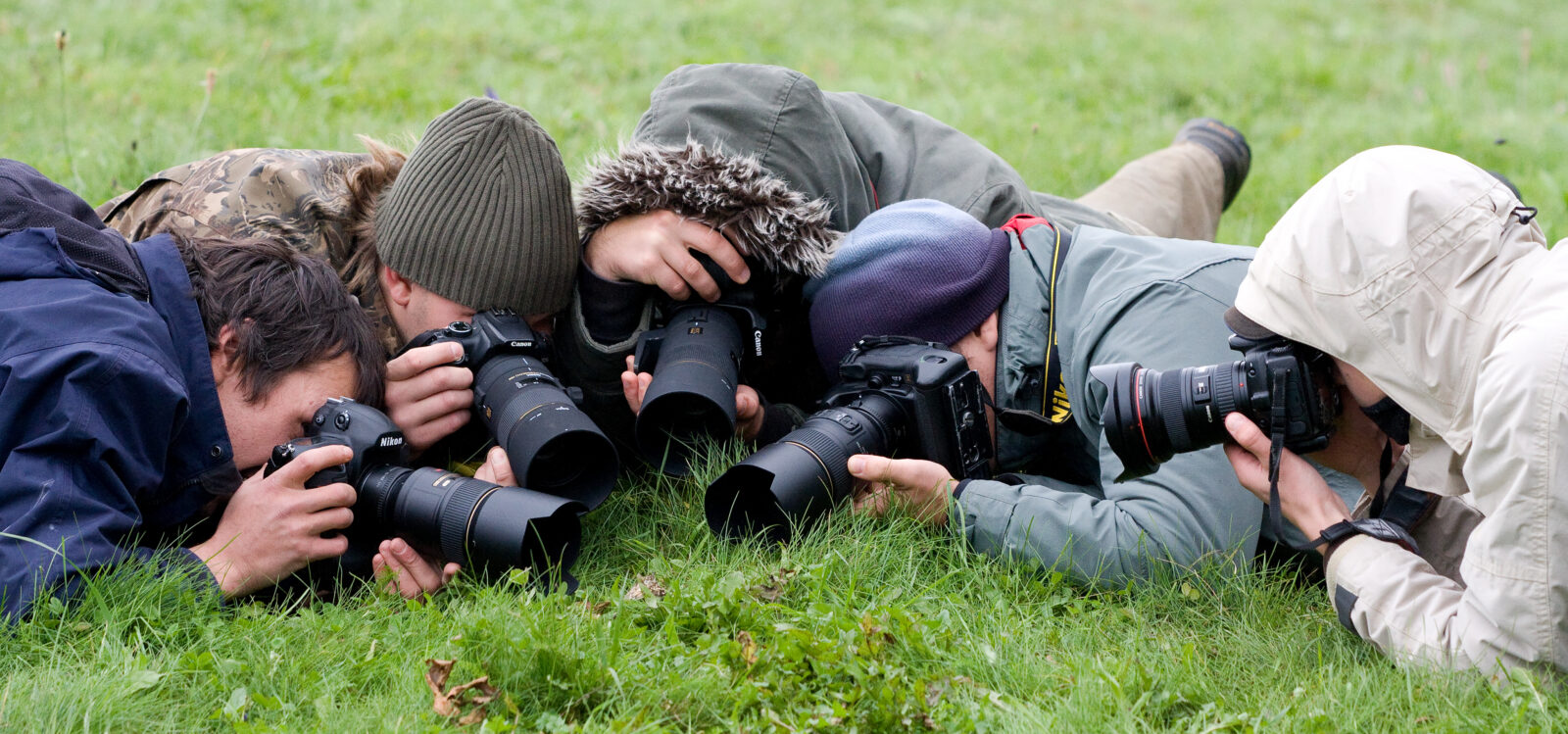 Nikon Canon Canon Nikon Canon