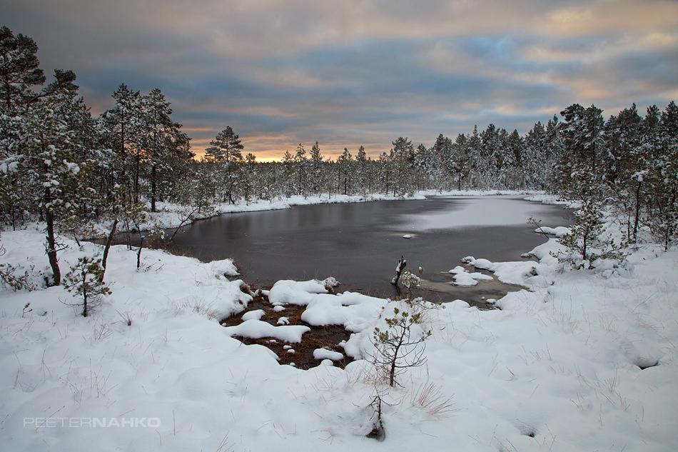 Ajutine talv