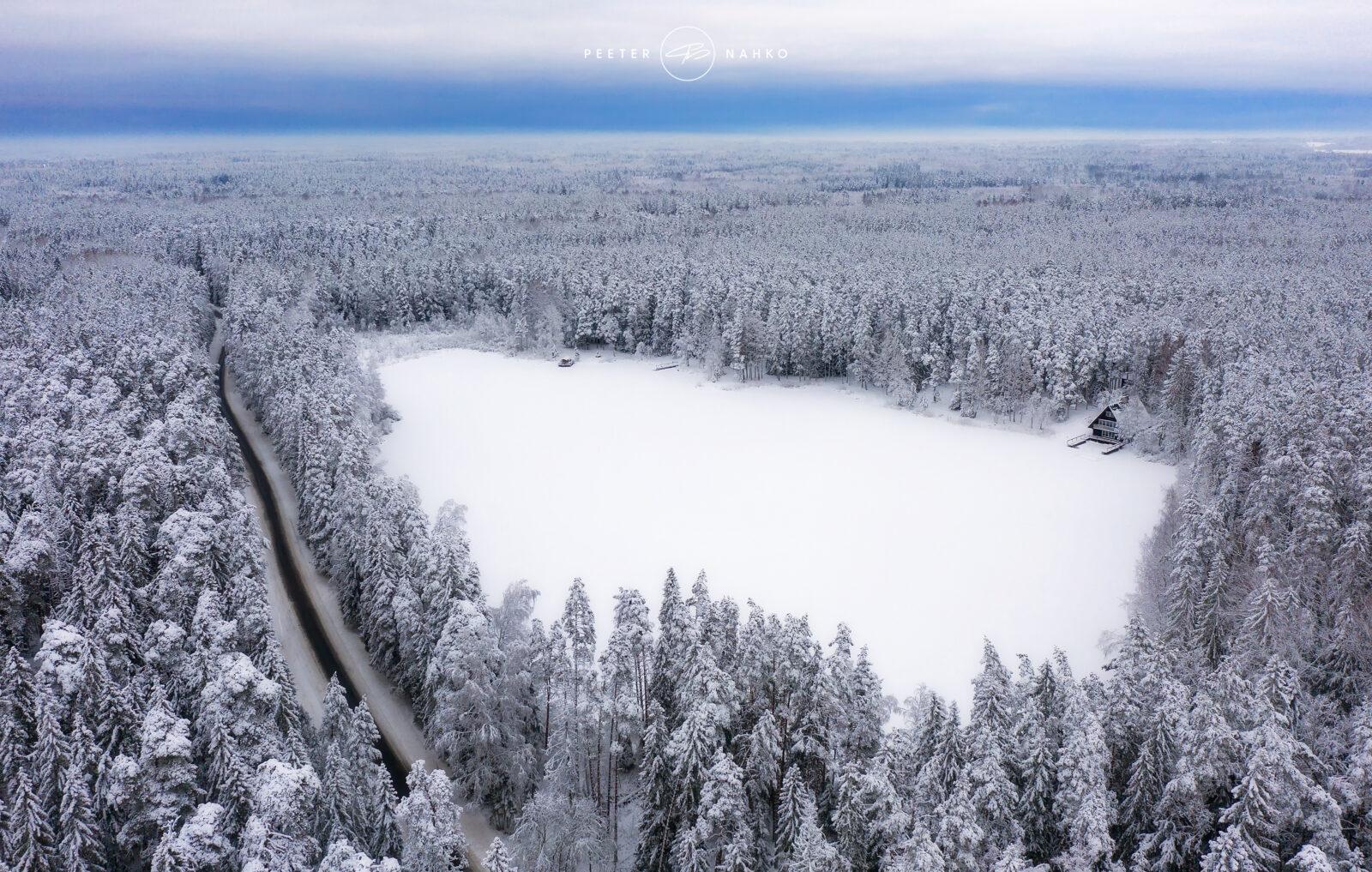 Viitna järv